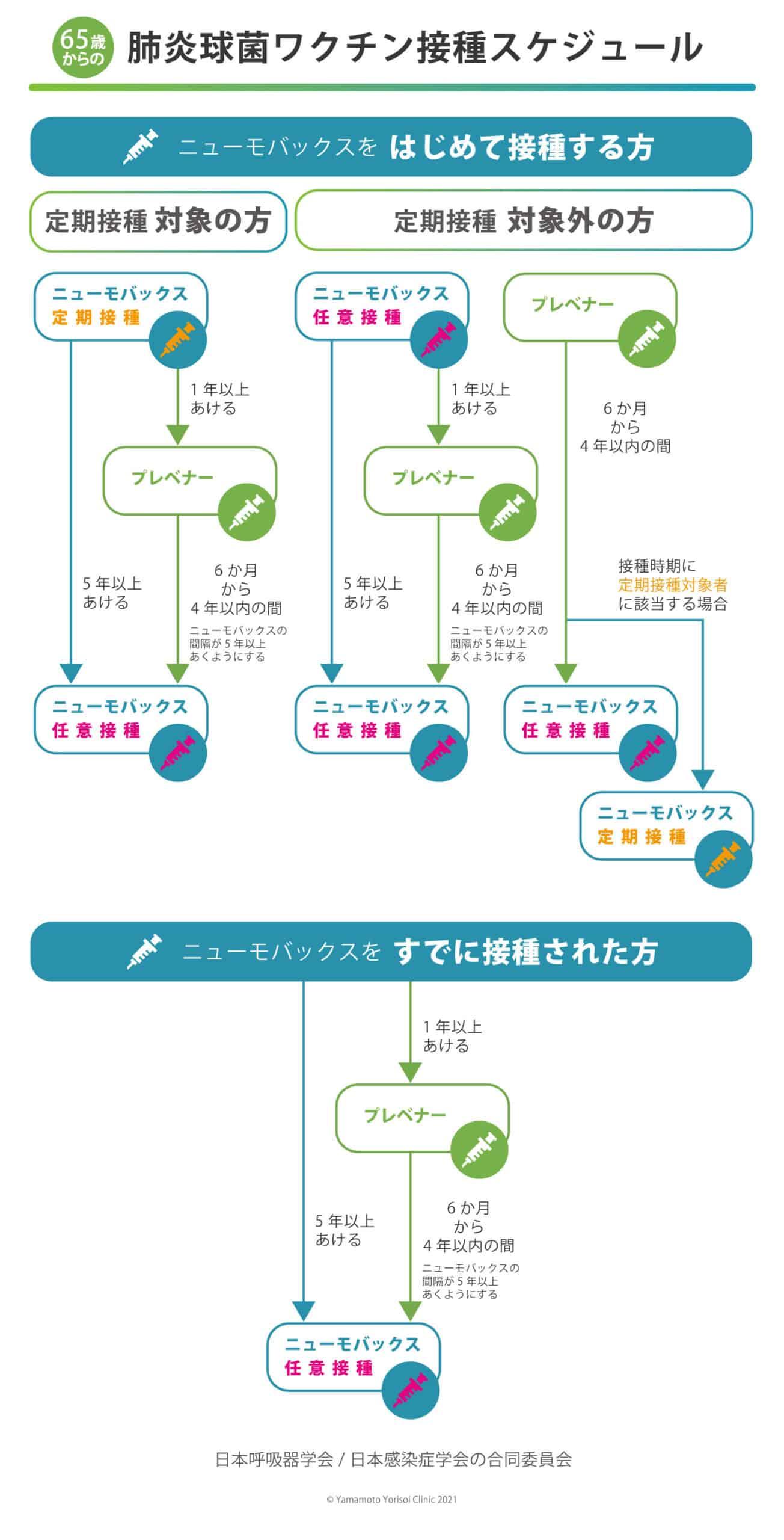 ワクチン接種スケジュールイメージ図